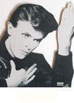 CLICK FOR BOWIE CATALOGUE